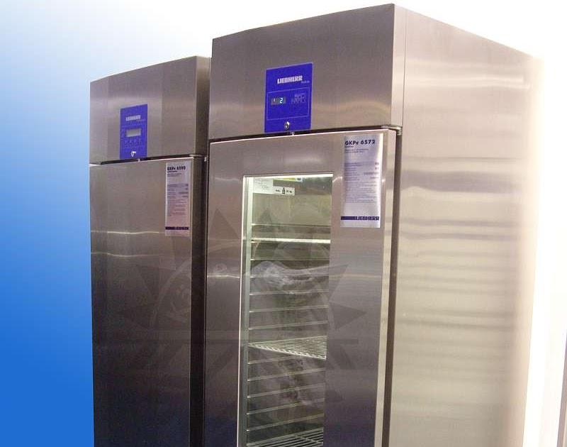 Red Bull Mini Kühlschrank Neu Kaufen : ᐅ】mini getränkekühlschrank klein top angebote große auswahl