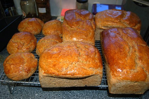 bread Feb 13