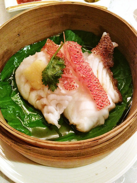 Hong Kong-Style Steamed Coral Trout