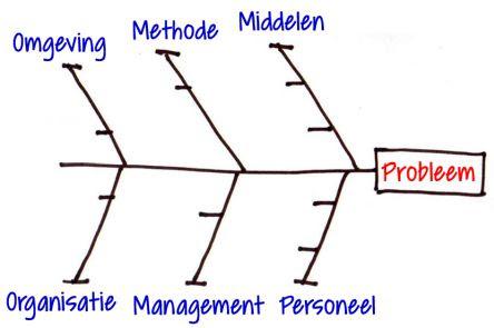Het Visgraatdiagram Volgens Webers Van Engelen Luijben