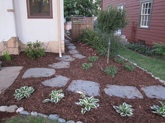 Side Garden Mulched