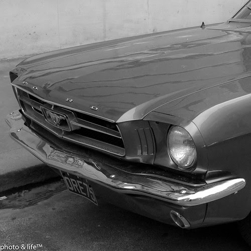 FORD MUSTANG by Jean-Fabien - photo & life™
