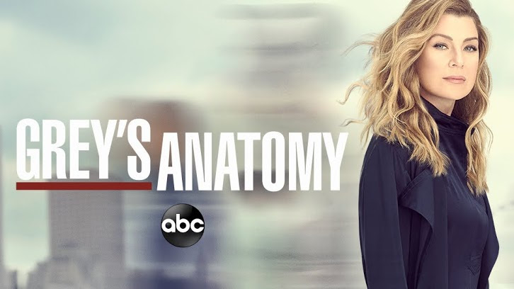 Quiz: So You Think You Know....Grey's Anatomy, Part 2