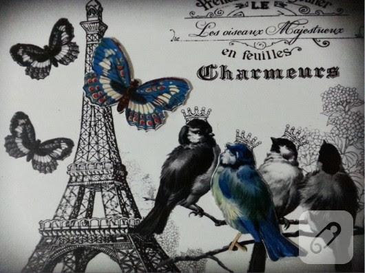 BLUE_BIRD_BUTTERFLY2