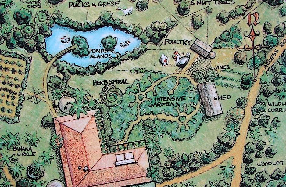 Como diseñar tu terreno usando permacultura