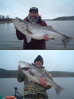 Win a striper fishing trip to Lake Ouchita