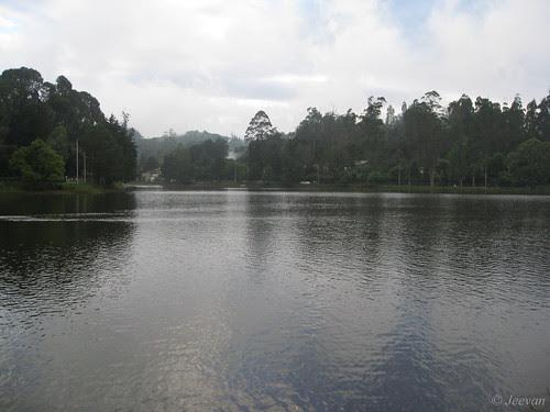 Kodai lake - calm