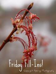 Friday Fill-Ins