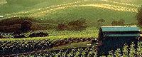 http://tumbleweedhouses.us5.list-manage.com/track/click?u=72ee9daa08c9bab48831f7f16&id=ddf04adfcb&e=2b7e6b23fa