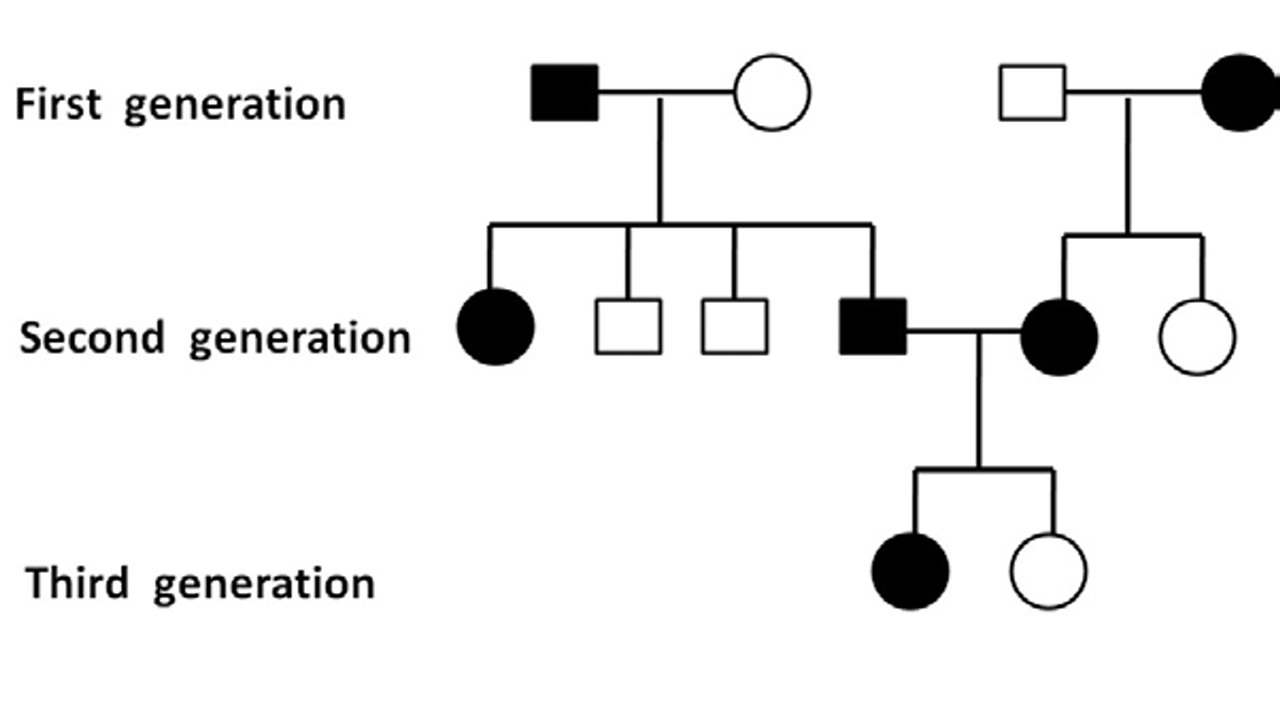 genetics - How to recognise the type of allele by pedigree ...