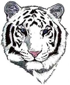 Tiger Head Tattoo Design