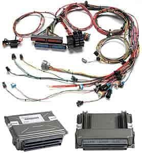 diagram ingram painless wiring 30120 universal turn