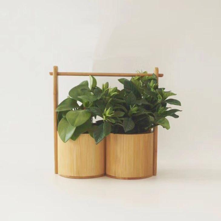 Kreasi Bambu Cina