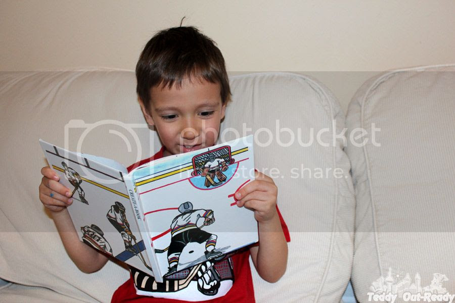 Teddy Hockey Book