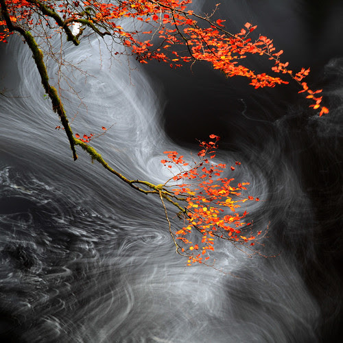 More Swirlies  por Mike Bolam