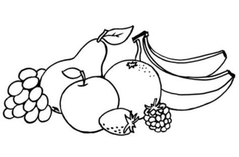 meyve boyama sayfalari  hobi fikirleri yaratici el