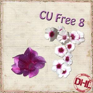 Dhl_CUfree8