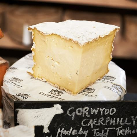 Gorwydd Caerphilly cheese   buy online   The Courtyard Dairy.