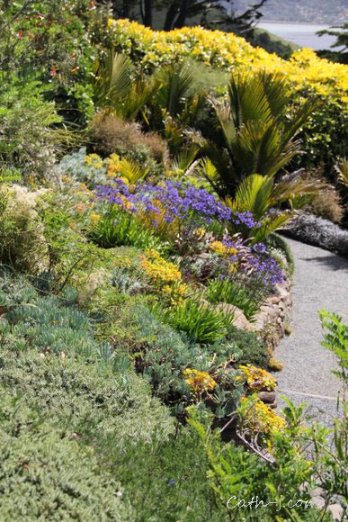 Larnach-Castle-Dunedin-NZ_23