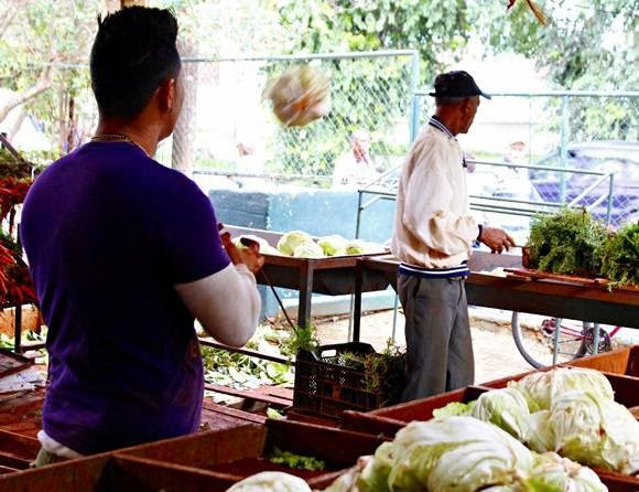 """Debido al desabastecimiento, los productos """"vuelan"""" en los mercados. Foto: José Raúl Concepción/Cubadebate."""