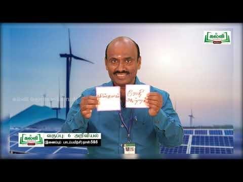 6th Science Bridge Course ஆற்றல் - உடலுருப்பு மண்டலங்கள் நாள் 5, 6 Kalvi TV