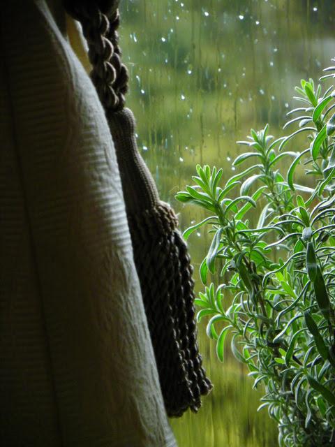 Rainy November Morning