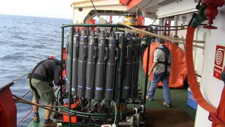 El rosetó de grans ampolles cilíndriques, al vaixell.