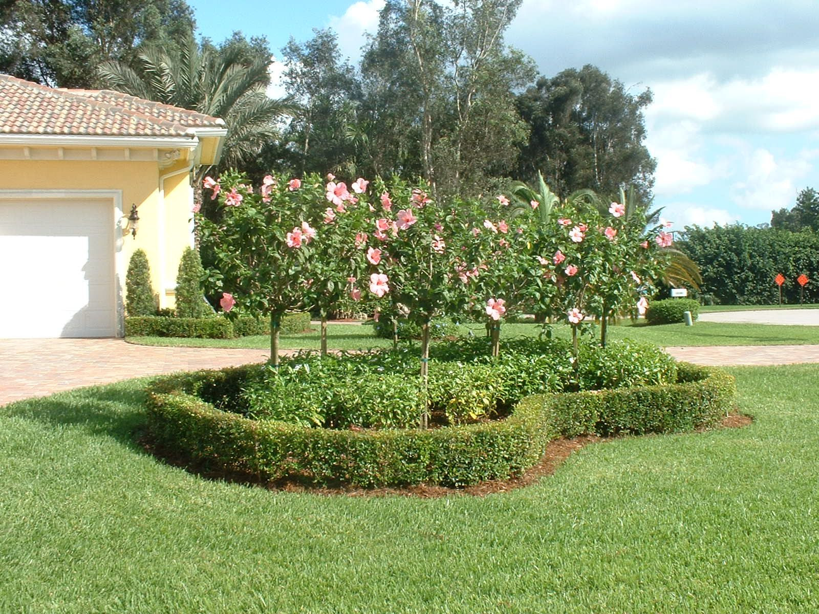 Florida landscaping ideas for backyard