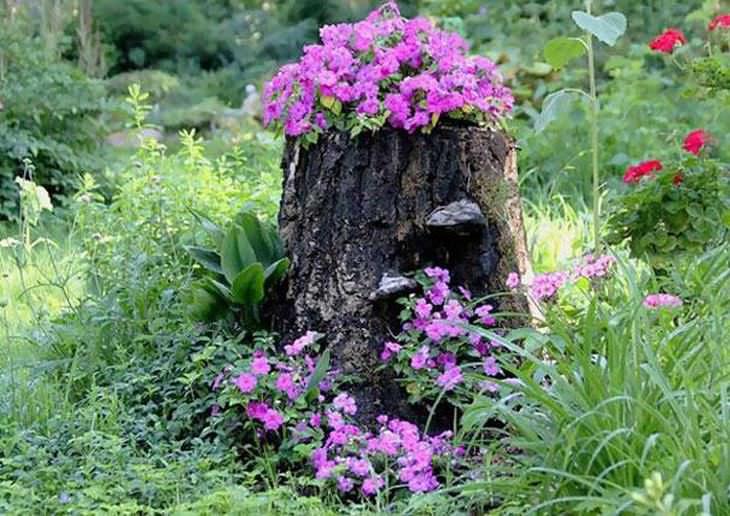 Lindas Floreiras de Tocos de Árvores
