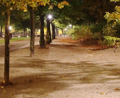 path in the night