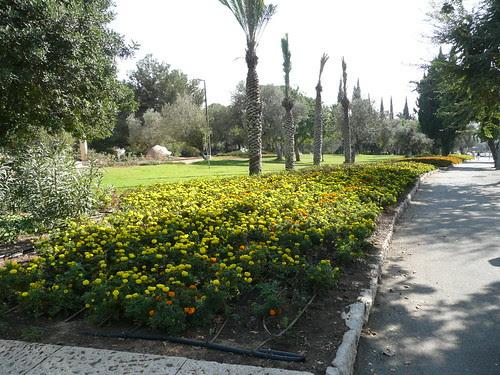 Jerusalem gardens