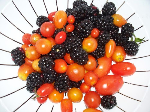 berries and toms