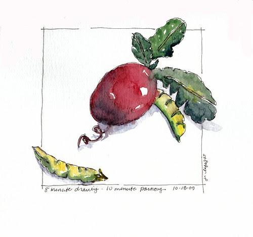 radish-8 minute drawing, 10 minute watercolor