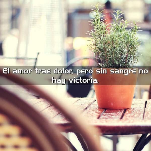 El Amor Trae Dolor Pero Sin Frases Con Imagenes
