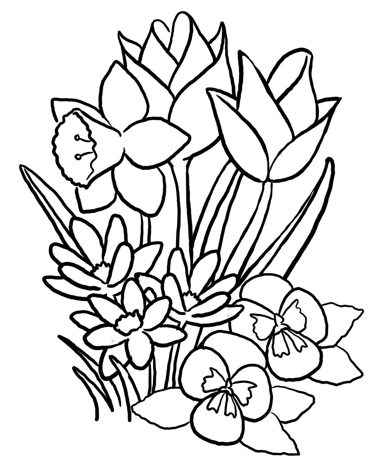 730 Coloring Pages Flowers And Animals For Free