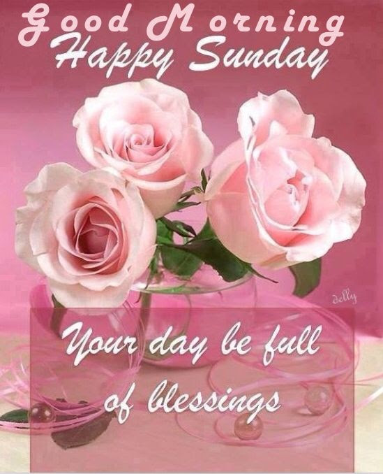 Sunday Good Morning Wishes With Blessings And Couple Of Rose