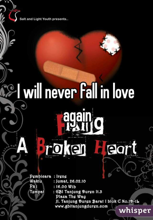 I Will Never Fall In Love Again