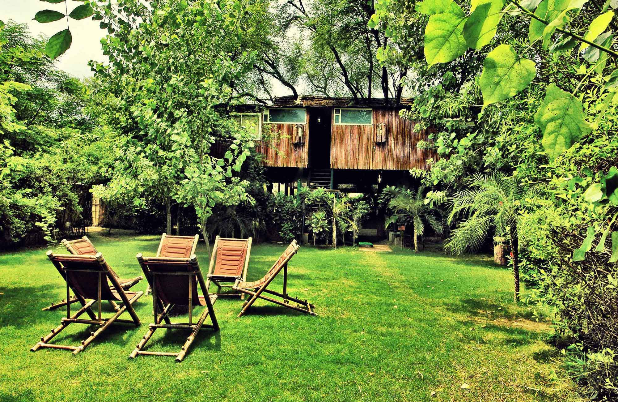 Most amazing Tree houses in the world