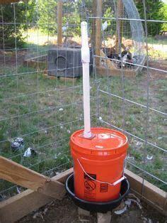 25  best ideas about Diy chicken waterer on Pinterest   Chicken waterer, Automatic chicken