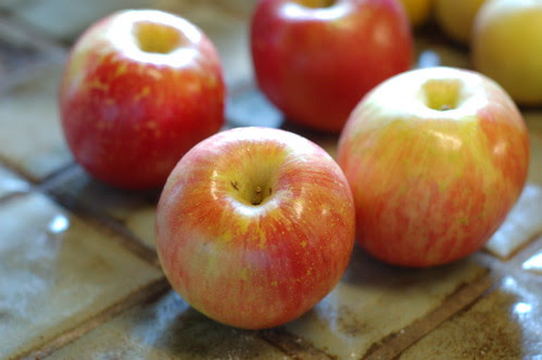 Fuji apples for apple pie