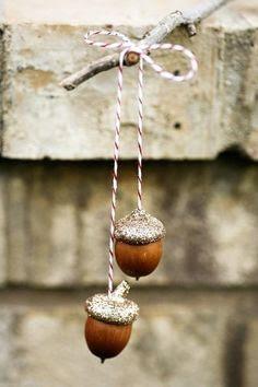 Acorn Ornament idea