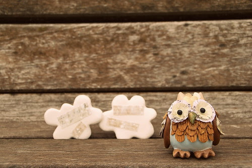 Little owl and two clouds