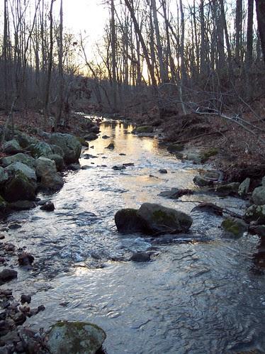Paint Branch stream