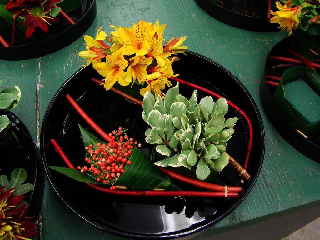 DSC02209 Sushi Flowers