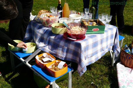 picnic_sal__3