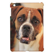 Boxer iPad Mini Case
