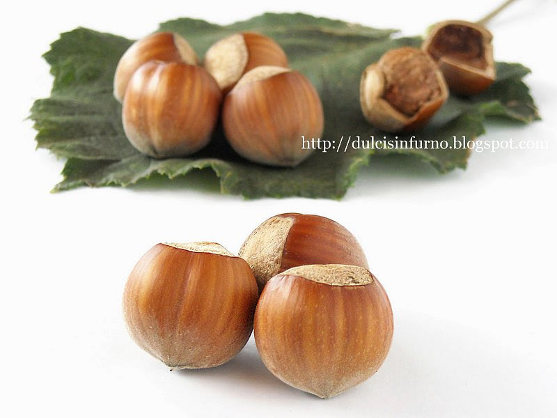 Nocciole di Giffoni-Hazelnuts
