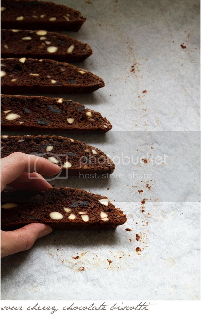 sour cherry chocolate biscotti photo p2p-3_zpscd629656.jpg