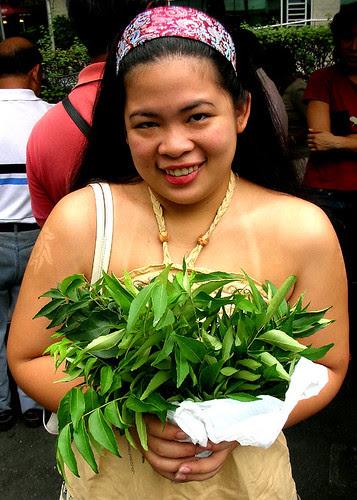 curry leaf princess