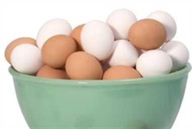 पेड़ पर उगेगा शाकाहारी अंडा